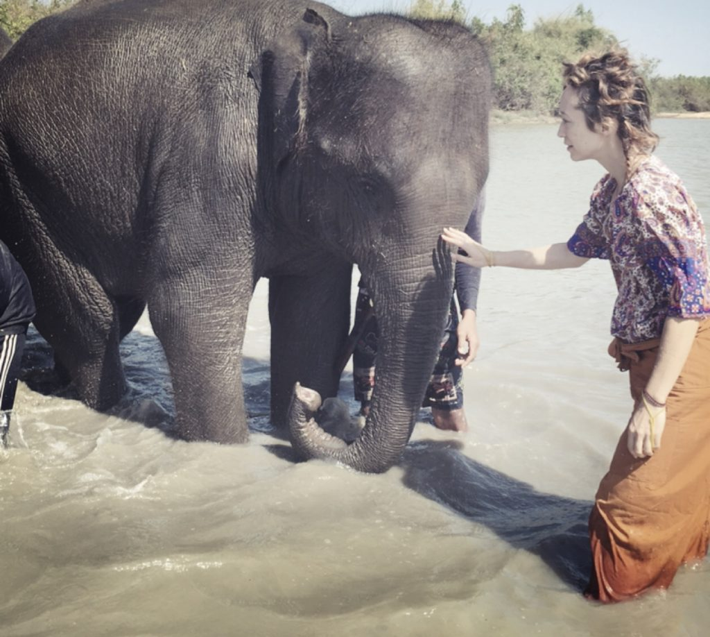 healing elephant