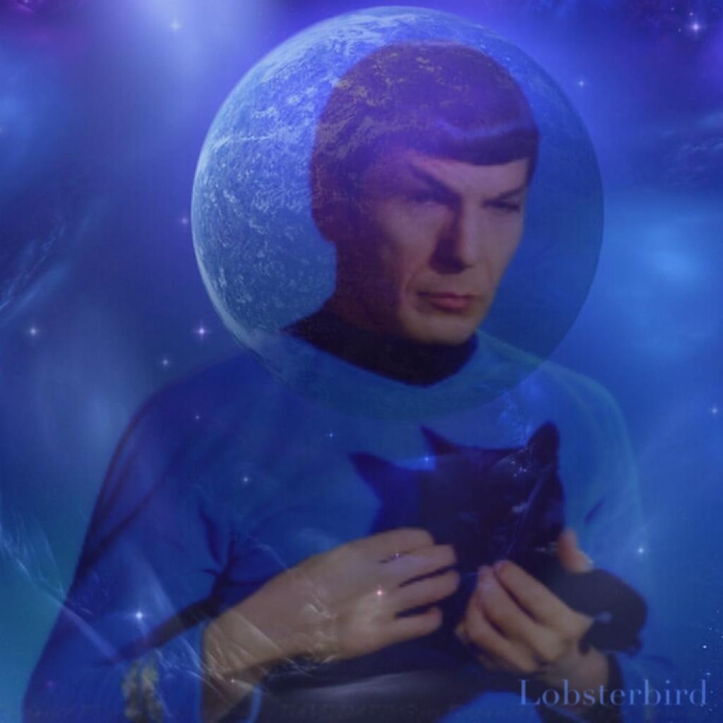 Spock Alien Cat Space Love